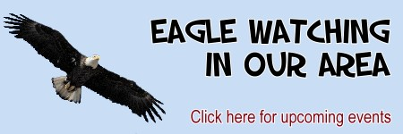 Where to see eagles