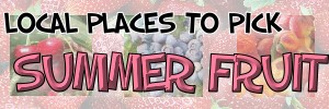 Where to pick your own summer fruit in the STL area