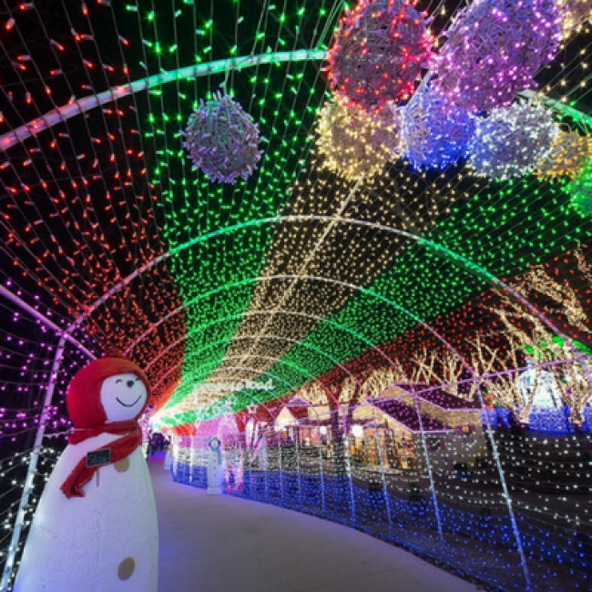 Christmas Light Displays In St Louis.Master Guide To December Holiday Fun In And Around St Louis