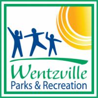 preschools in wentzville mo pumpkin decoratingwentzville parks amp recreation out 379